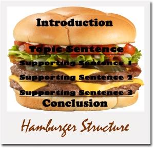 hamburger-structure